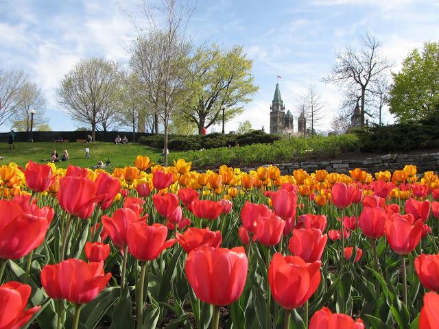 Primavera em Ottawa
