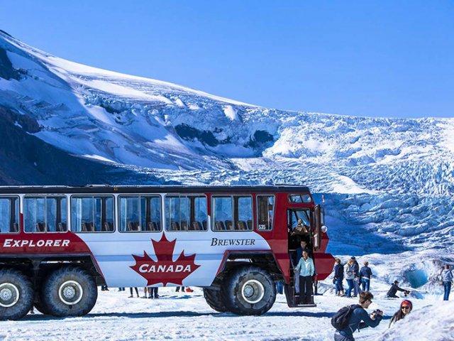 Excursão no Columbia Icefield Discovery em Calgary